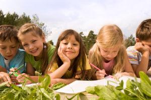 NOV_educazione ambientale 1